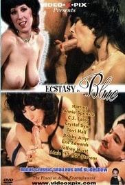 Ecstasy in Blue 1976 Watch Online