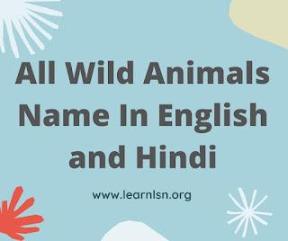 wild animals name 10