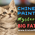 Why is there a mysterious big fat cat in the magical ancient painting?
