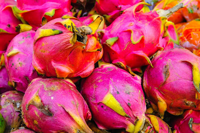 Dragon fruit propagation through seed