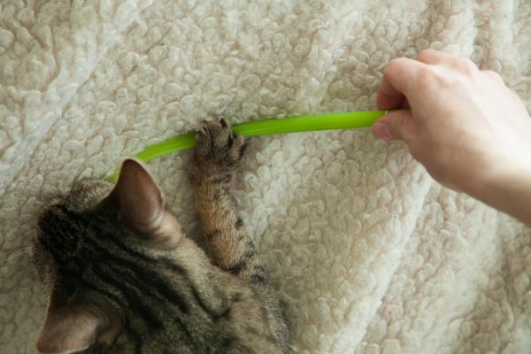 ручка травинка игрушка для кошек