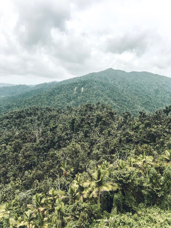 puerto rico travel diary, where to go in puerto rico, el yunque rainforest, north carolina bloggger, best places to go in puerto rico, style blogger