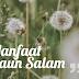 Manfaat Daun Salam