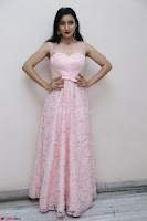 Sakshi Kakkar in beautiful light pink gown at Idem Deyyam music launch ~ Celebrities Exclusive Galleries 034.JPG