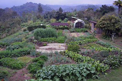 Las Cañadas Centro de Agroecología y Permacultura Veracruz