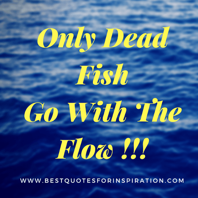 Only Dead Fish Go With The Flow !!!