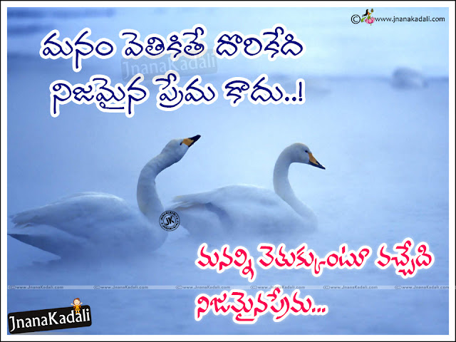 best telugu love quotes, telugu love value messages Quotes with hd wallpapers