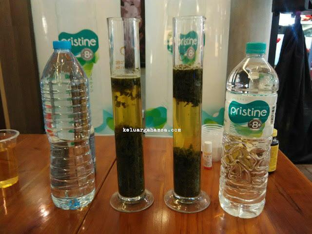 Ingin Lakukan Detoksifikasi Tubuh Secara Alami Coba Minum Pristine 8 Setiap Hari Keluarga Hamsa