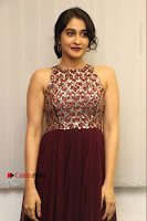 Actress Regina Candra Latest Stills in Maroon Long Dress at Saravanan Irukka Bayamaen Movie Success Meet .COM 0002.jpg