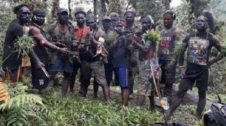 Wasapda Manuver KKSB Jelang Kelanjutan Otsus Papua Jilid 2