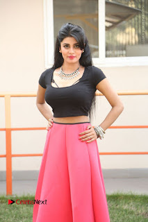 Telugu Actress Harini Stills at Dhyavudaa Movie Teaser Launch  0158.JPG