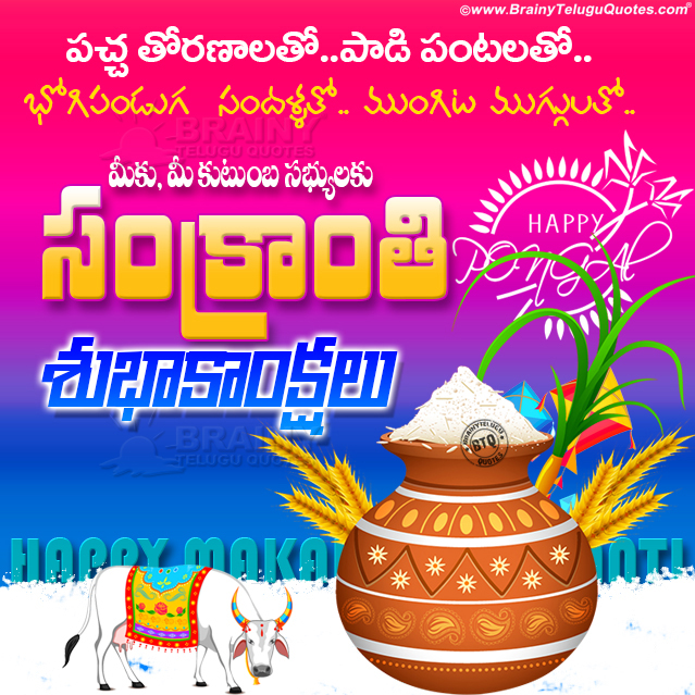 makara sankranthi greetings in telugu, telugu makara sankranthi wallpapers, makara sankranthi hd wallpapers