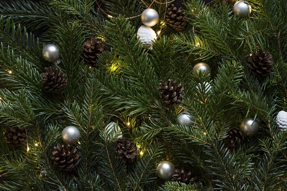 Weihnachtsbaum liefern lassen bonn