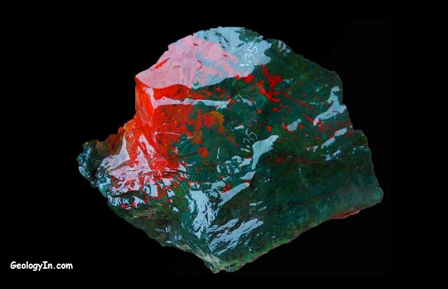 A heliotrope, also known as a bloodstone.