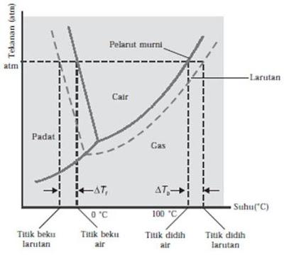 Diagram fasa yang mengilustrasikan kenaikan titik didih dan penurunan titik beku larutan berair