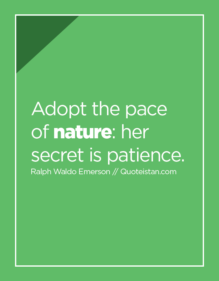 Adopt the pace of nature her secret is patience.