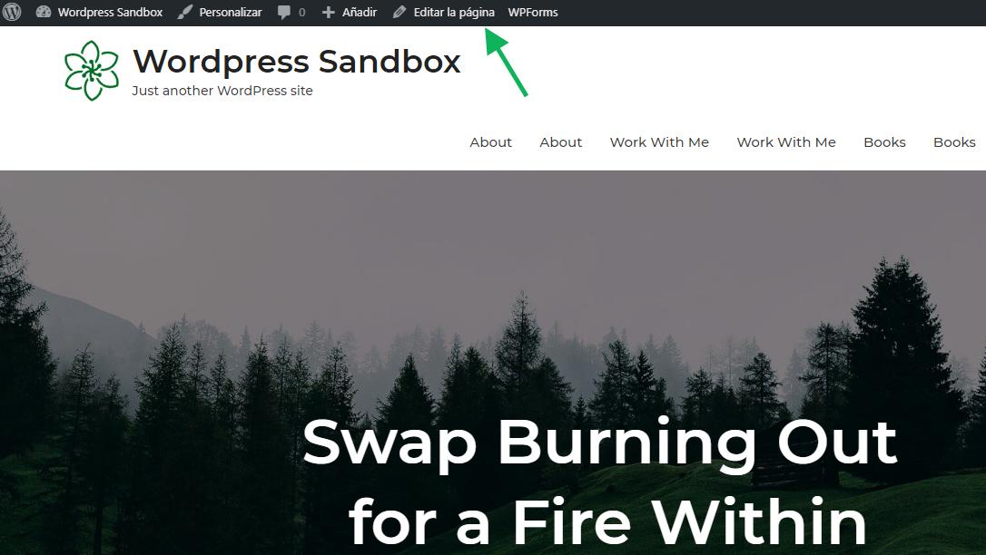 Editar pagina WordPress