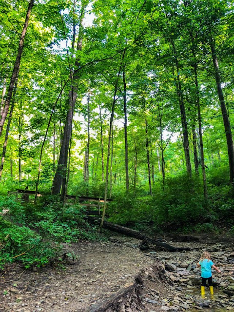 Wandering the landscape of Caldwell Nature Preserve. Image credit Stephanie Taleghani.