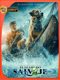 El Llamado Salvaje (The Call of the Wild) (2020) BDRip [1080p] Latino [Google Drive] Panchirulo