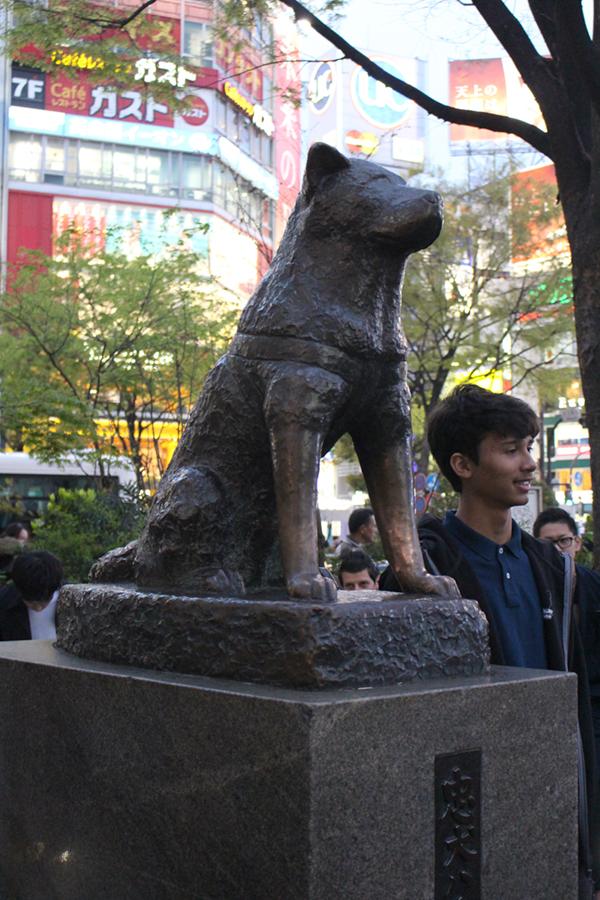 Hachiko chien fidèle - Shibuya