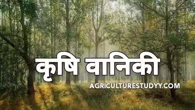 कृषि वानिकी (krishi vaniki) क्या है अर्थ एवं परिभाषा, agroforestry meaning in hindi, कृषि वानिकी के प्रकार, कृषि वानिकी का महत्व एवं लाभ, वानिकी योजना