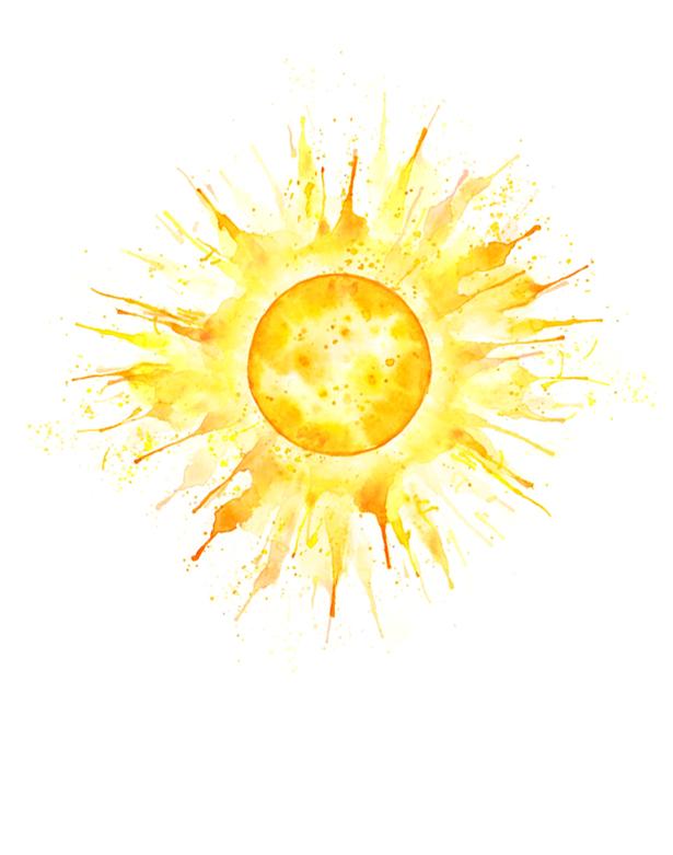 amy holliday illustration sun  quot summer solstice bee illustration vector free bee illustration vector free