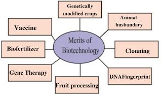 Merits of biotechnology chart
