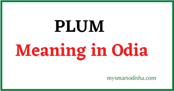 Plum Odia Meaning
