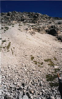 photo of a mountainside|rockslide