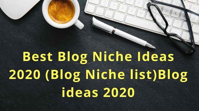 Best Blog Niche Ideas 2020 - 2021 (Blog Niche list)Blog ideas 2021