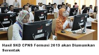 Hasil Pengumuman SKD CPNS Formasi 2019/2020 akan Diumumkan Serentak