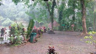 Wana Wisata Rawa Bayu, Songgon Banyuwangi