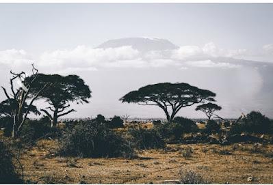 safari-dress-in-kenya