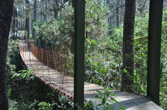 Zone 235 Cikole tempat Outbound Lembang Bandung-Cikole