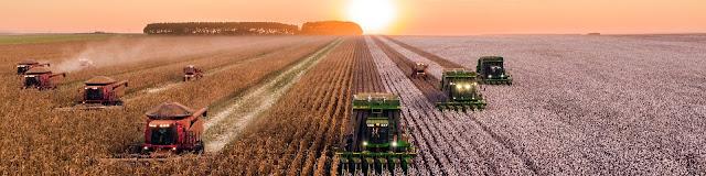 نشامى ويب - تخصص الاقتصاد الزراعي و ادارة الأعمال الزراعية
