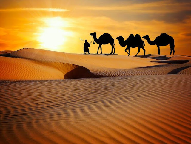 The ten largest deserts in the world