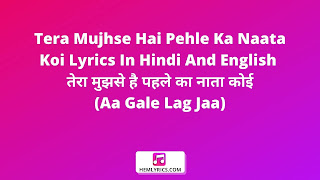 Tera Mujhse Hai Pehle Ka Naata Koi Lyrics In Hindi And English - तेरा मुझसे है पहले का नाता कोई (Aa Gale Lag Jaa)