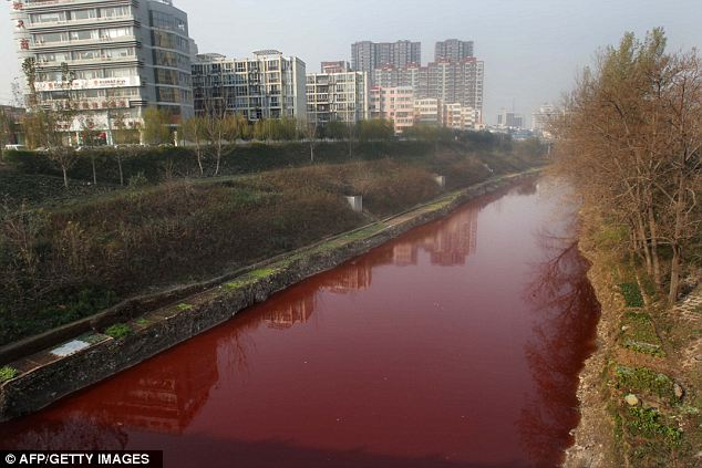 نهر الدماء في الصين article-0-0F2F64D200