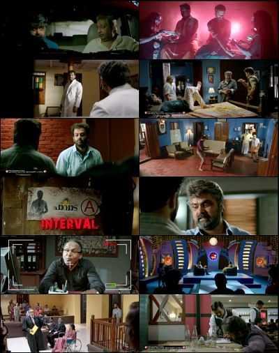 Pavada (2016) Malayalam HD Movie Download 300mb DVDRip