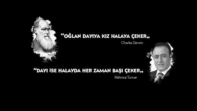 Darwin ve Mahmut Tuncer