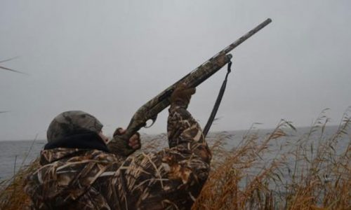 Σε λιγότερο από 25 ημέρες ξεκινά η νέα κυνηγετική περίοδος. Οι κυνηγοί, σύμφωνα με τη νέα Ρυθμιστική, πιάνουν τα όπλα στις 20 Αυγούστου.