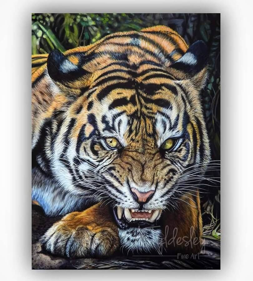 10-Snarling-Tiger-Amber-Tyldesley-www-designstack-co