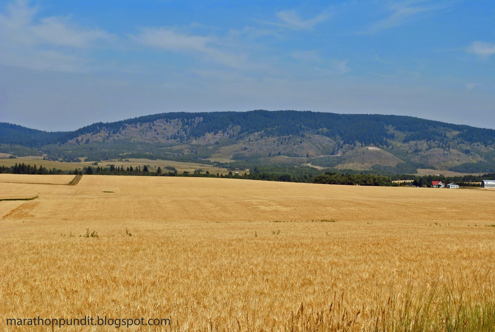Idaho if of course famous for potatoes, but it is also a leading wheat producing state. Here are some photographs that Mrs. Marathon Pundit took during her ...