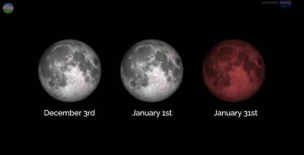 Melihat Secara Live Buat kamu yang melewatkan atau tidak memiliki kesempatan melihat gerhana bulan