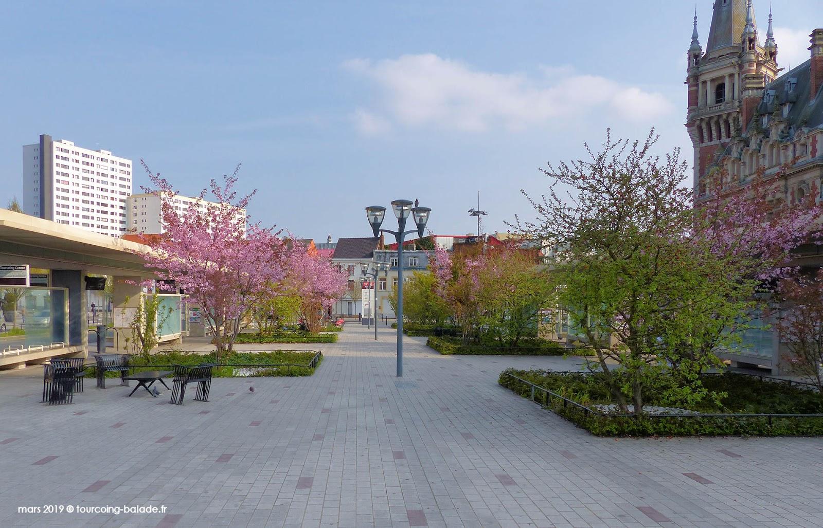 Carrés végétaux, Place Roussel, Tourcoing 2019