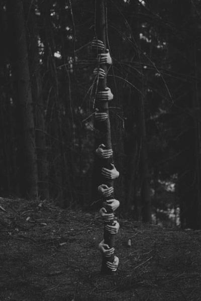 Photographie noir et blanc creepy halloween foret