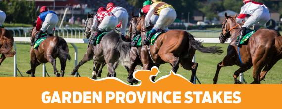 Provincial Garden Stakes Preview