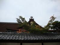 le tegole scure del tetto