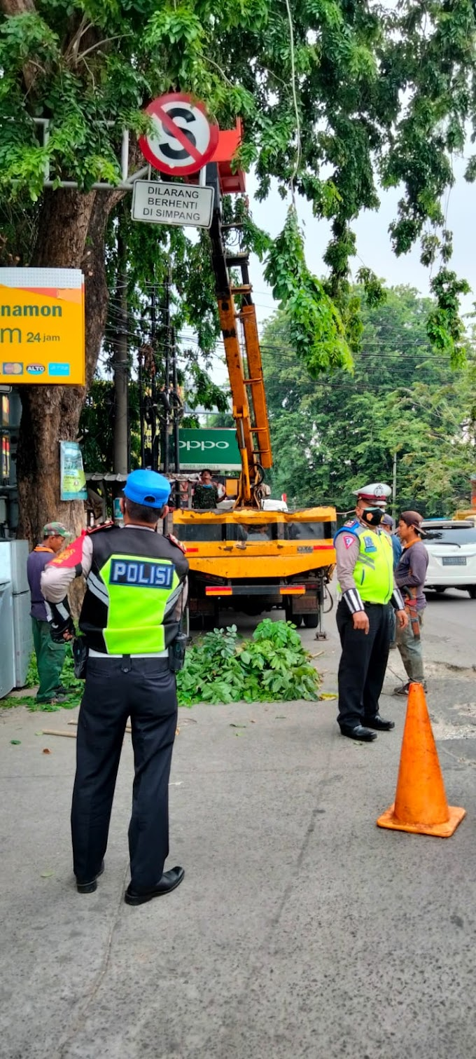 Satlantas Polrestro Depok Amankan Lokasi Pemangkasan Pohon di Jalan M Jassin