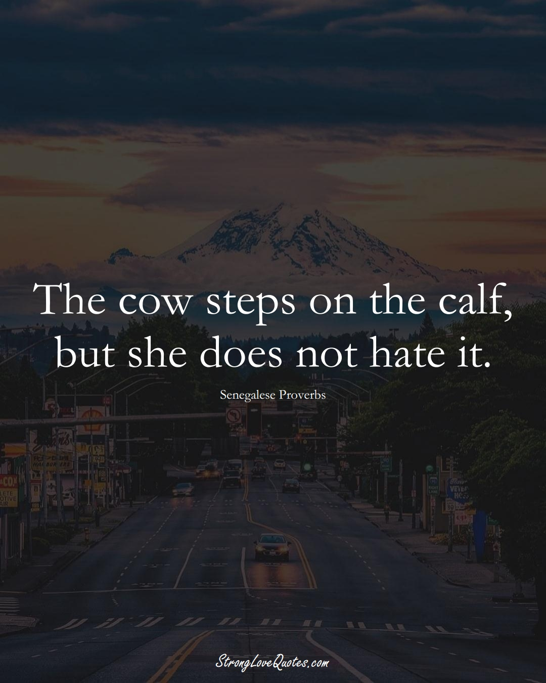 The cow steps on the calf, but she does not hate it. (Senegalese Sayings);  #AfricanSayings